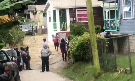 MAN FATALLY STABBED AT WHITE HILL
