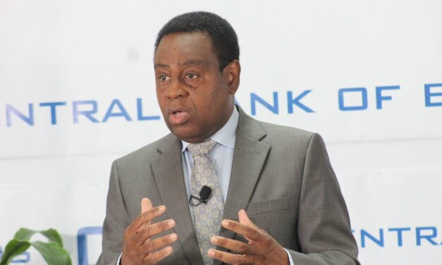Central Bank reports mild economic recovery