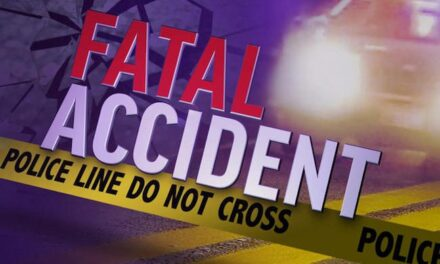 Pedal Cyclist Killed In Road Accident